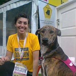 Dog Run 2013-2014